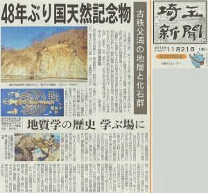 国天然記念物に指定決定 古秩父湾の地層と化石群
